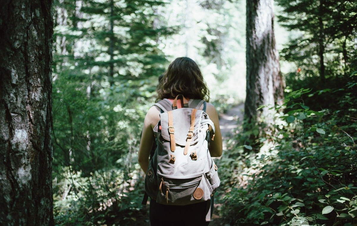 Can a 4-day work week save the planet? Hiker